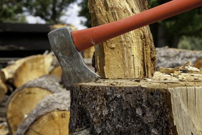 Axe Wedged Into Tree Stump