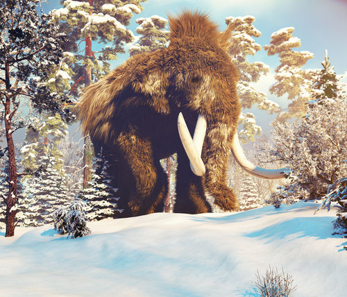 Big Mammoth In The Winter Forest 3D Illustration