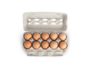 Eggs In Cardboard Rack On White Background Mock Up Copy Space