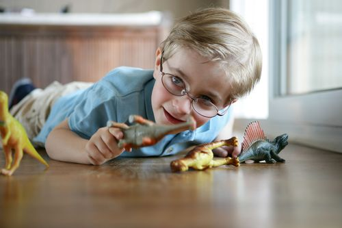 Little Boy Playing With Toy Dinosaurs
