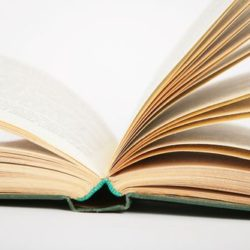 Opening Book